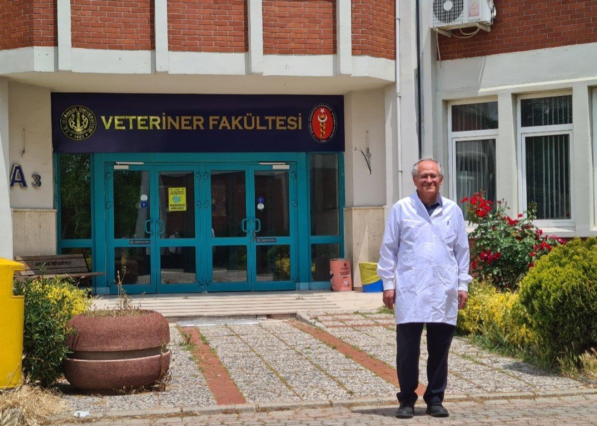 İstanbul da kuşlarda Batı Nil Virüsü tespit edildi #2