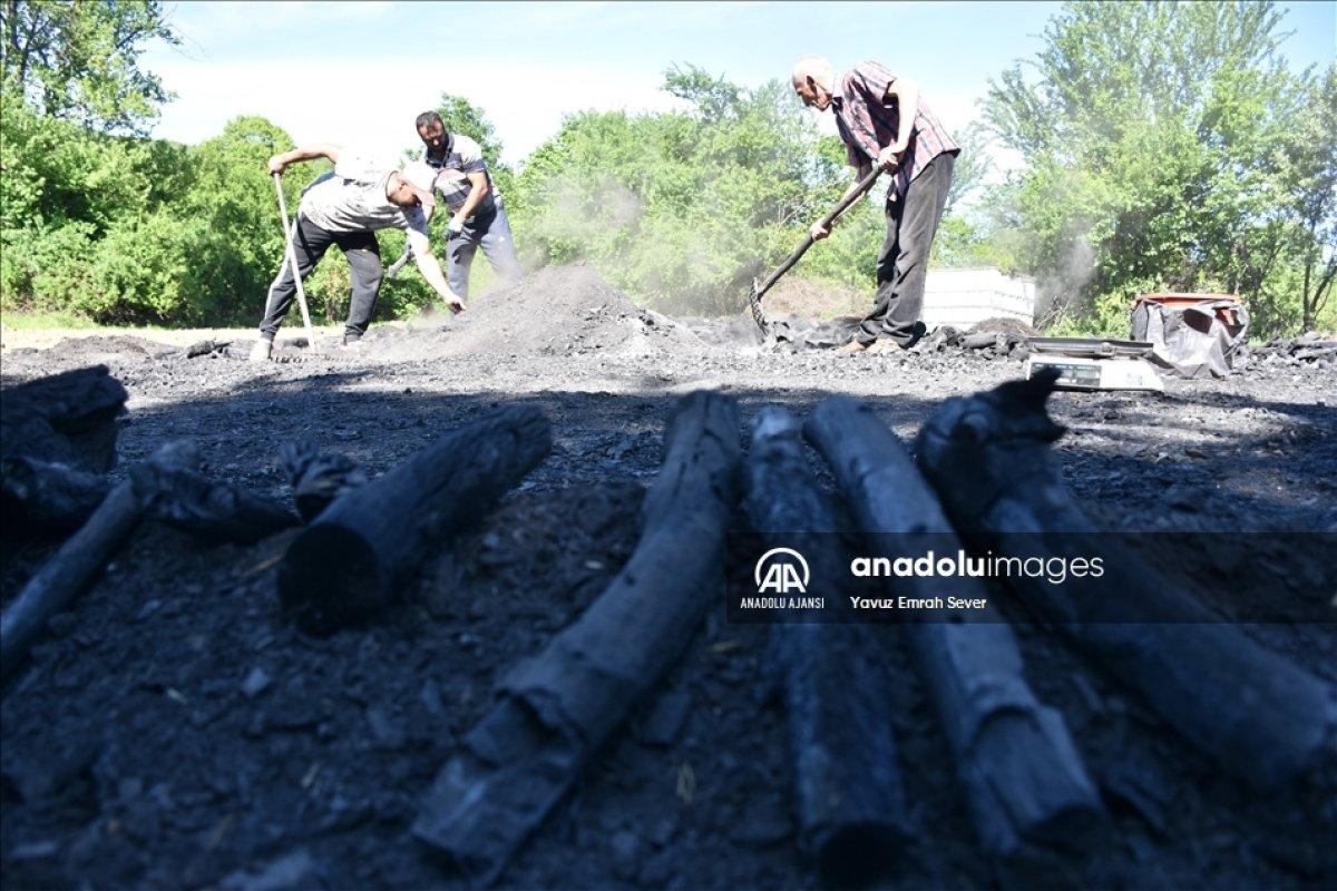 Bilecik te meşe odunlarını mangal kömürüne dönüştürüyorlar #6