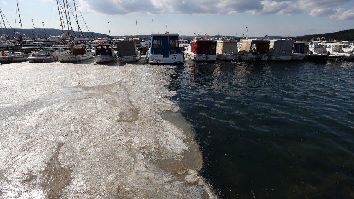 Müsilaj nedeniyle zarar gören balıkçılara ekonomik destek  #2