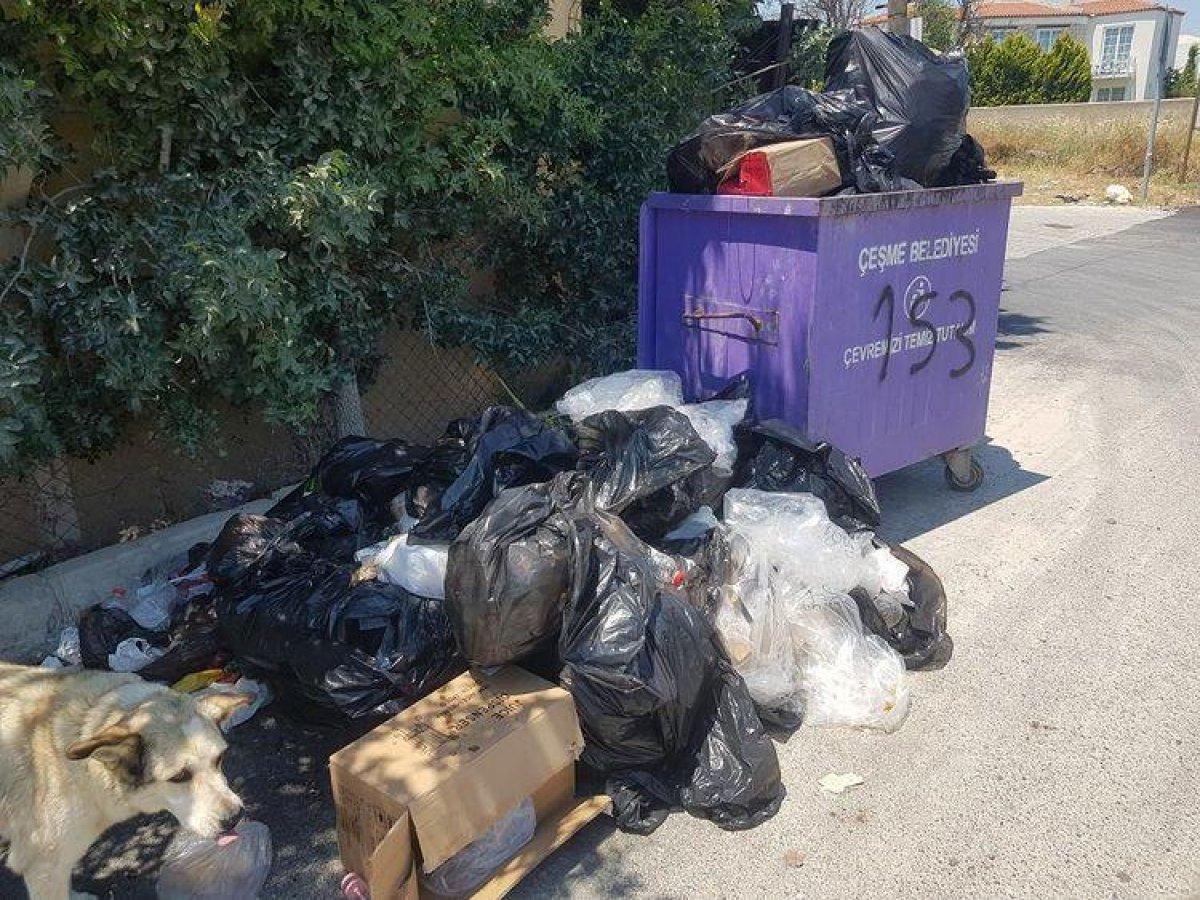 CHP nin yönetimindeki Çeşme de çöp krizi #1