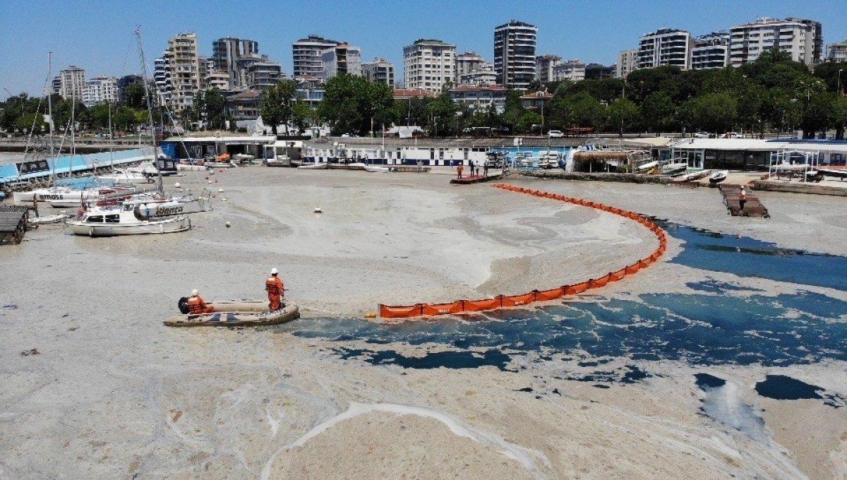 Caddebostan sahilinde müsilaj temizliği  #2