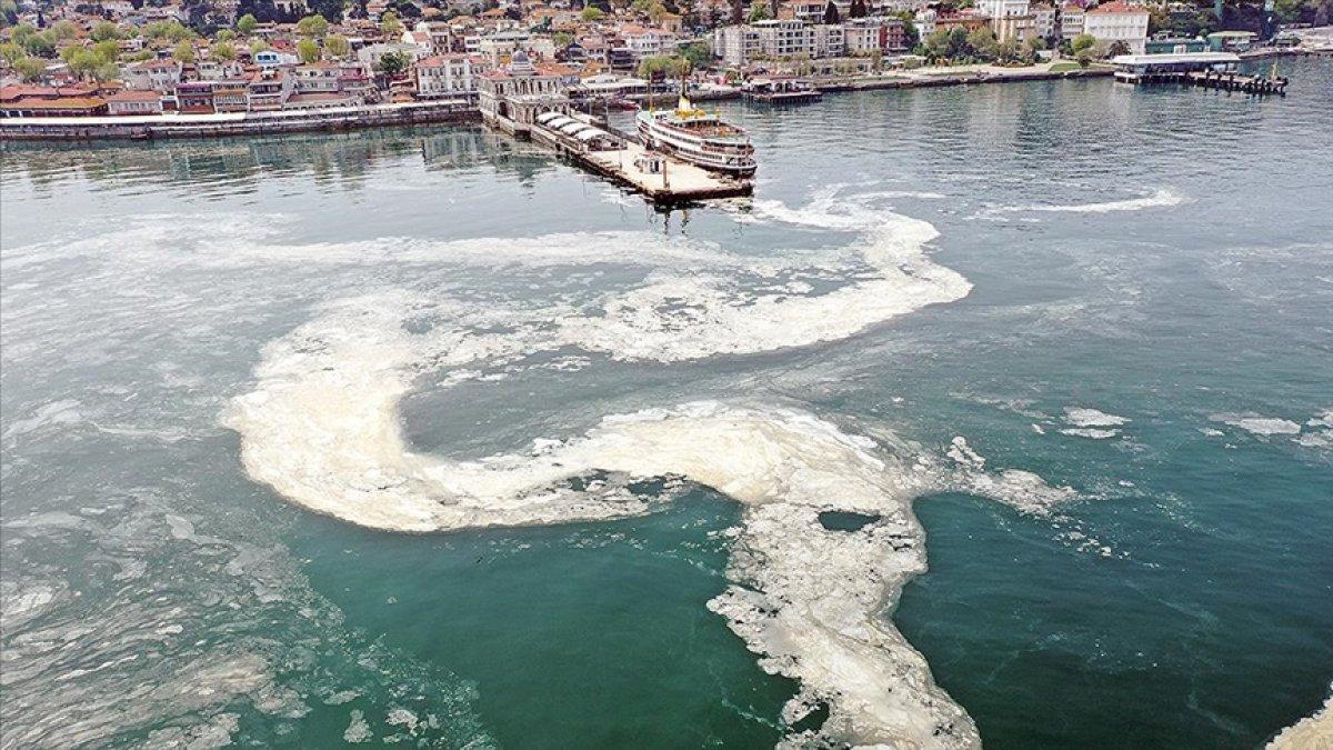 Marmara Denizi ndeki deniz salyasına, reaktif oksijen yöntemiyle çözüm #1