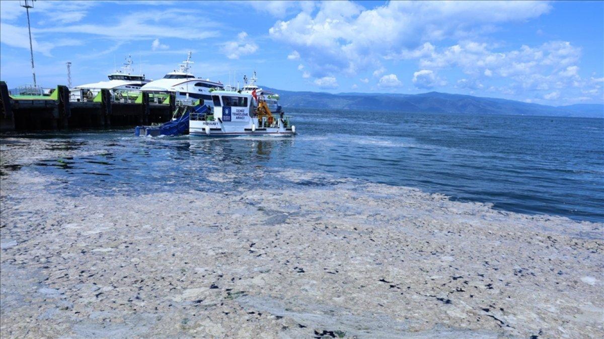 Marmara Denizi ndeki deniz salyasına, reaktif oksijen yöntemiyle çözüm #2