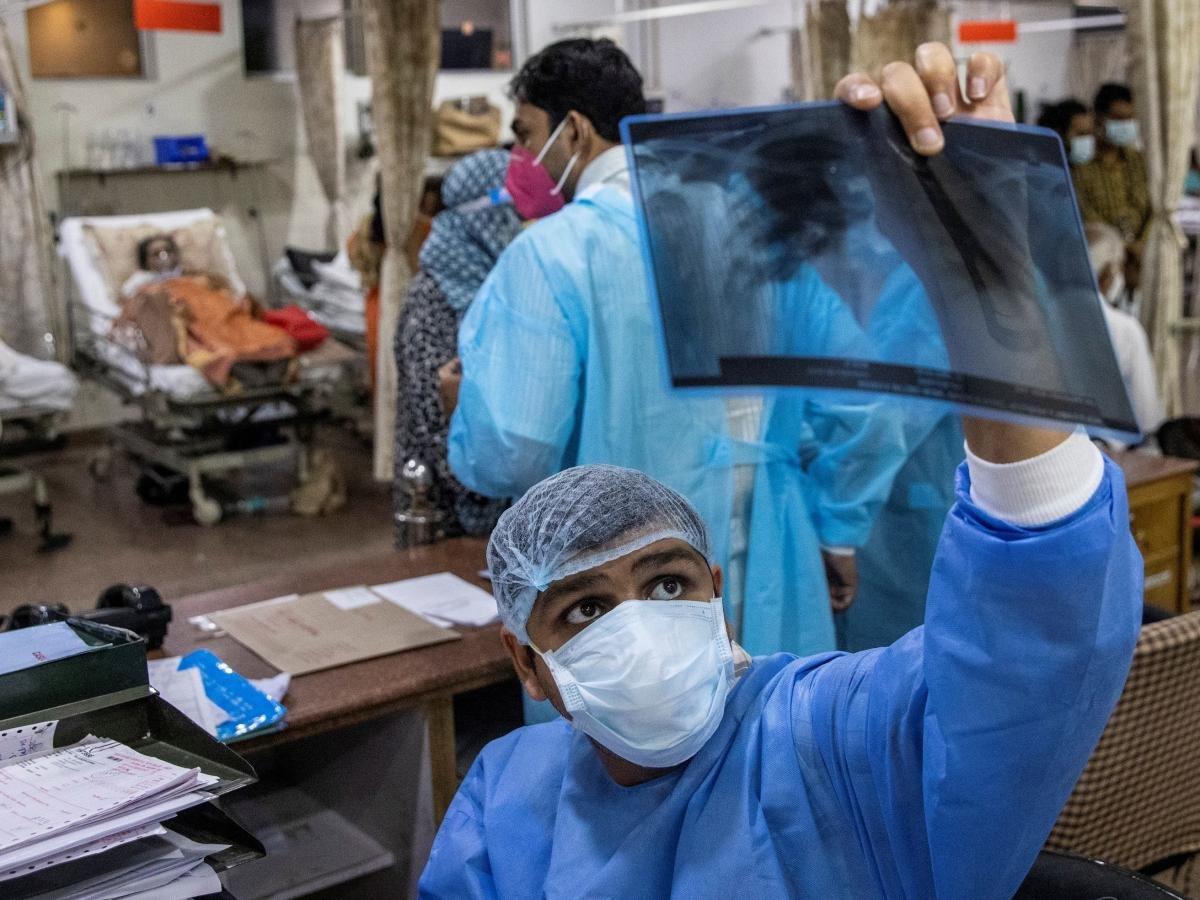Hindistan'da kara mantar vakası sayısı 28 bini geçti #3