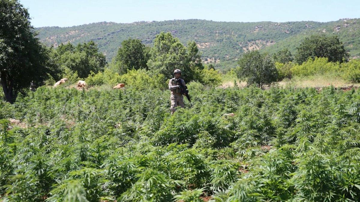 Diyarbakır da dev narko terör operasyonu #3