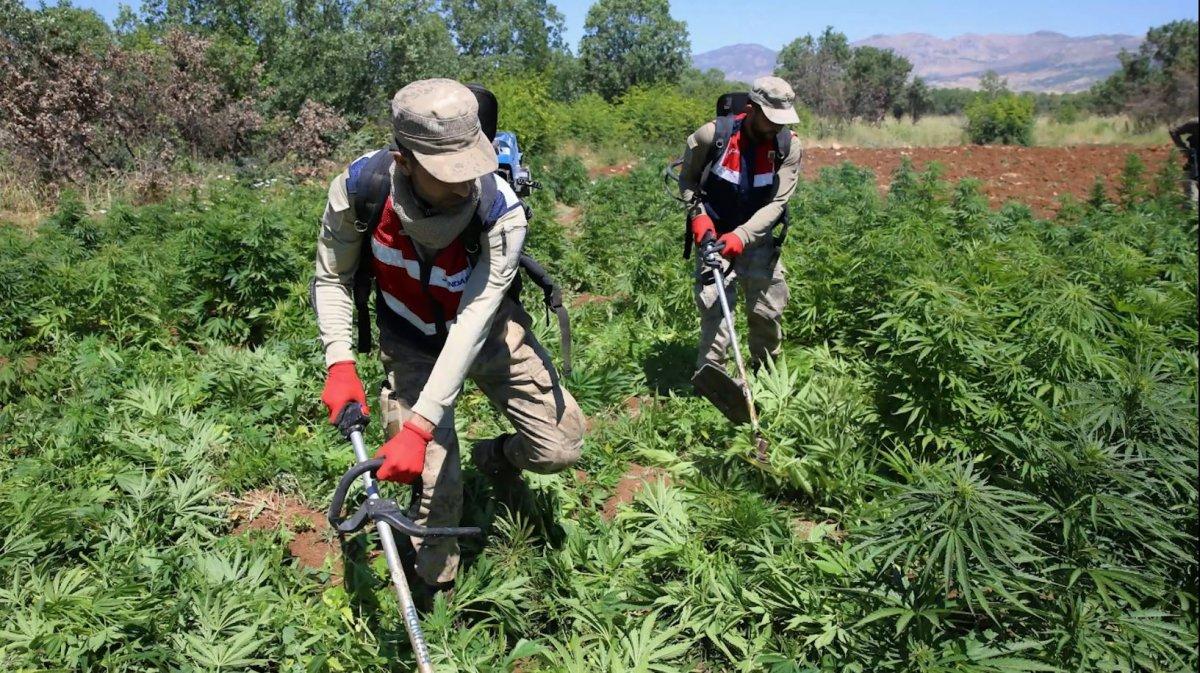 Diyarbakır da dev narko terör operasyonu #1