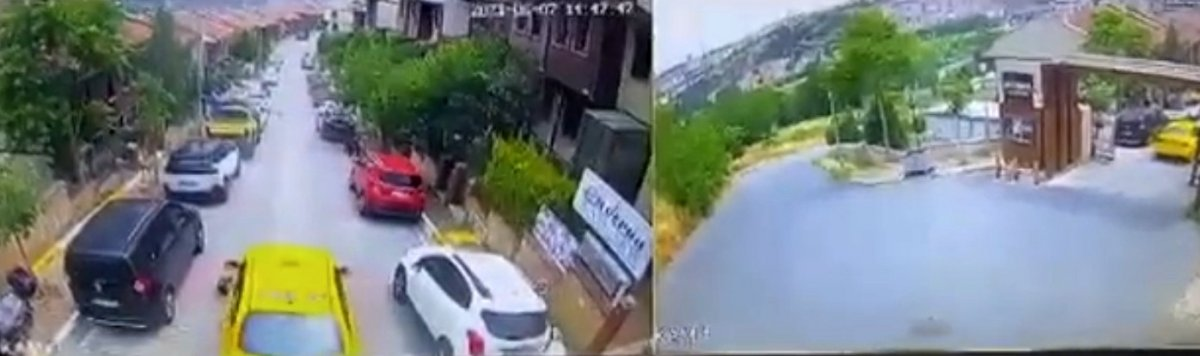 Eyüpsultan da taksi şoförü köpeği ezerek öldürdü #2