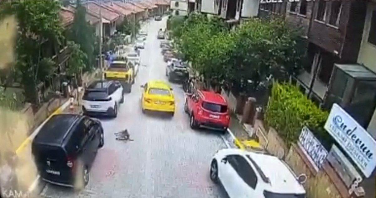 Eyüpsultan da taksi şoförü köpeği ezerek öldürdü #4