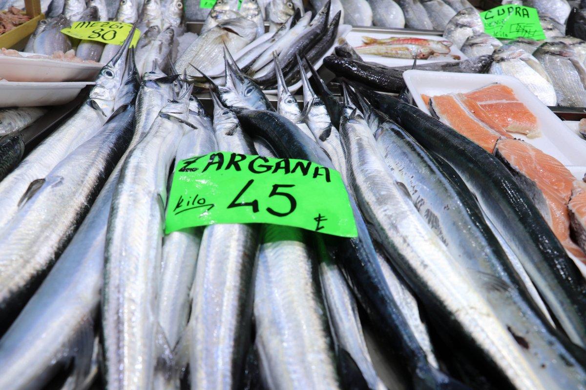 Prof. Dr. Adnan Ayaz: Müsilaj balıkları etkilemez, rahatlıkla tüketin  #6