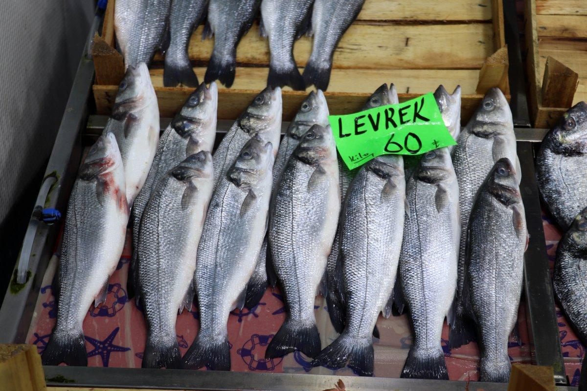 Prof. Dr. Adnan Ayaz: Müsilaj balıkları etkilemez, rahatlıkla tüketin  #2