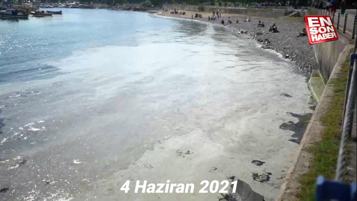 Caddebostan Sahili nin kıyıları müsilajdan temizlendi #6