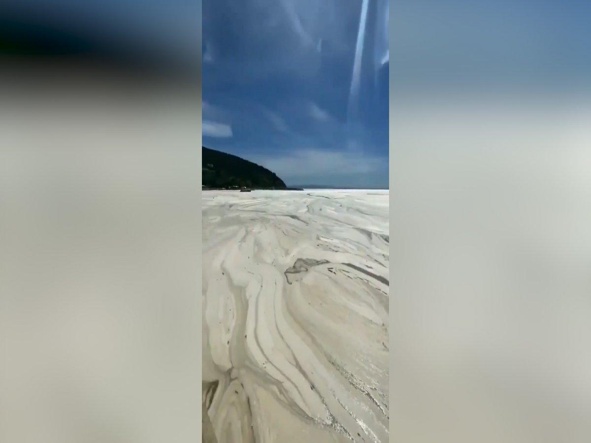 Balıkesir e bağlı Erdek sahilli tamamen müsilaj ile kaplandı #1