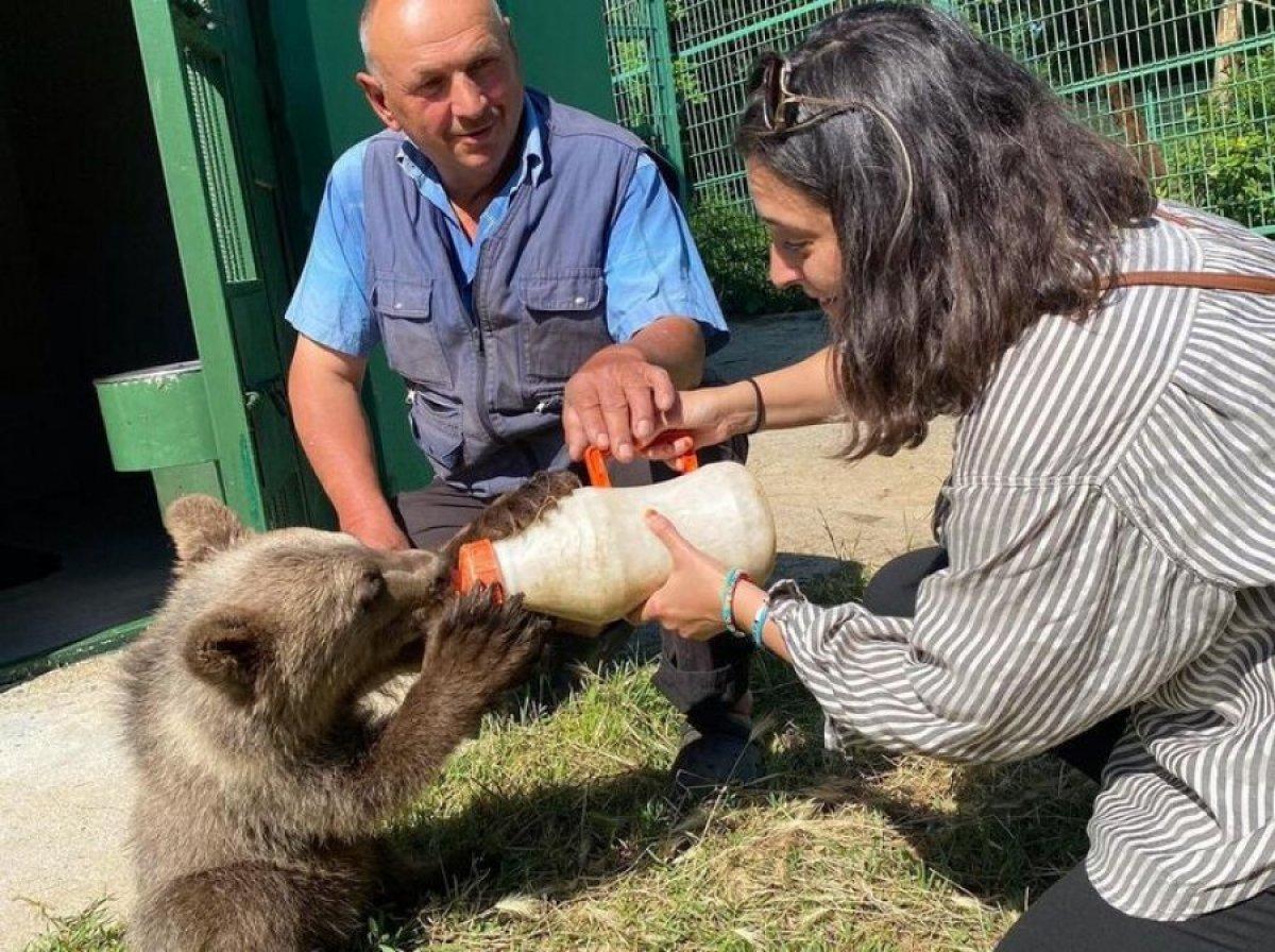Aslıhan Gürbüz yavru ayı besledi #2