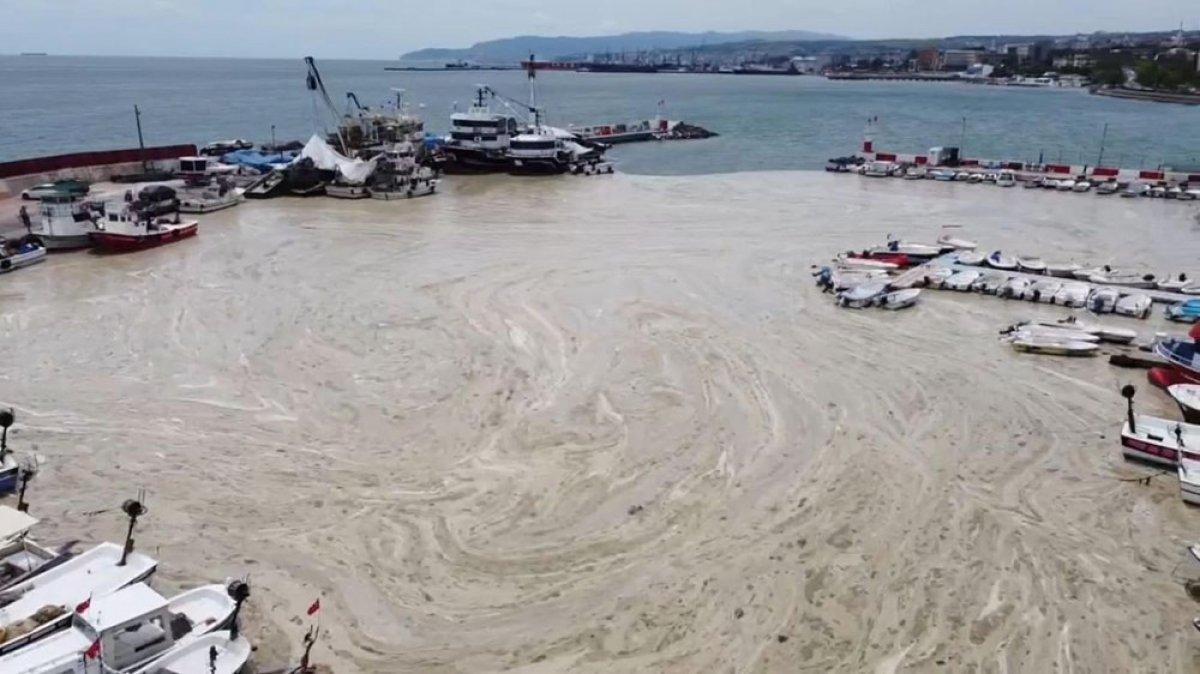 Tekirdağ kıyılarındaki müsilaj etkisini yitirdi  #4