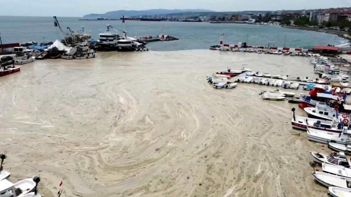 Tekirdağ kıyılarındaki müsilaj etkisini yitirdi  #3