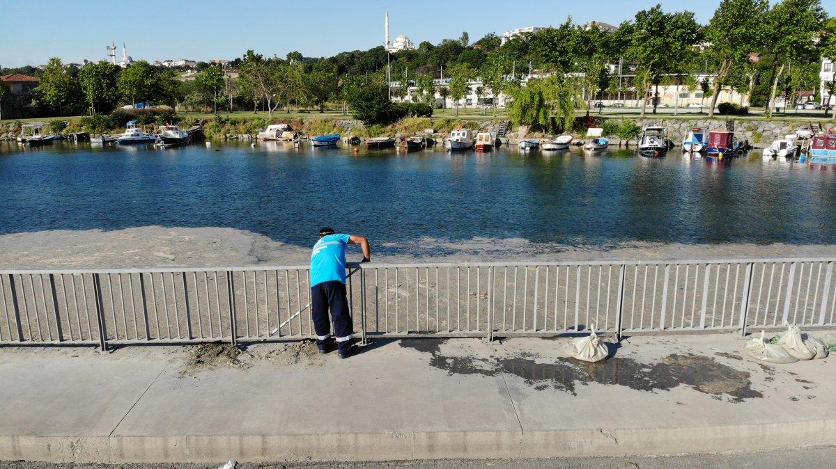 İstanbul da bir yandan müsilaj temizliği, bir yandan deniz keyfi #3