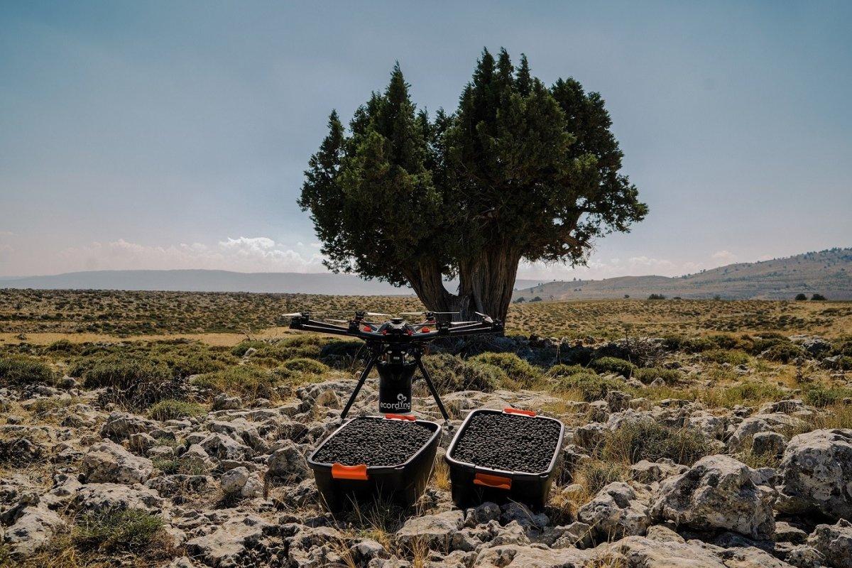 Drone ulaşması zor alanlara ağaç tohumu atacak #2
