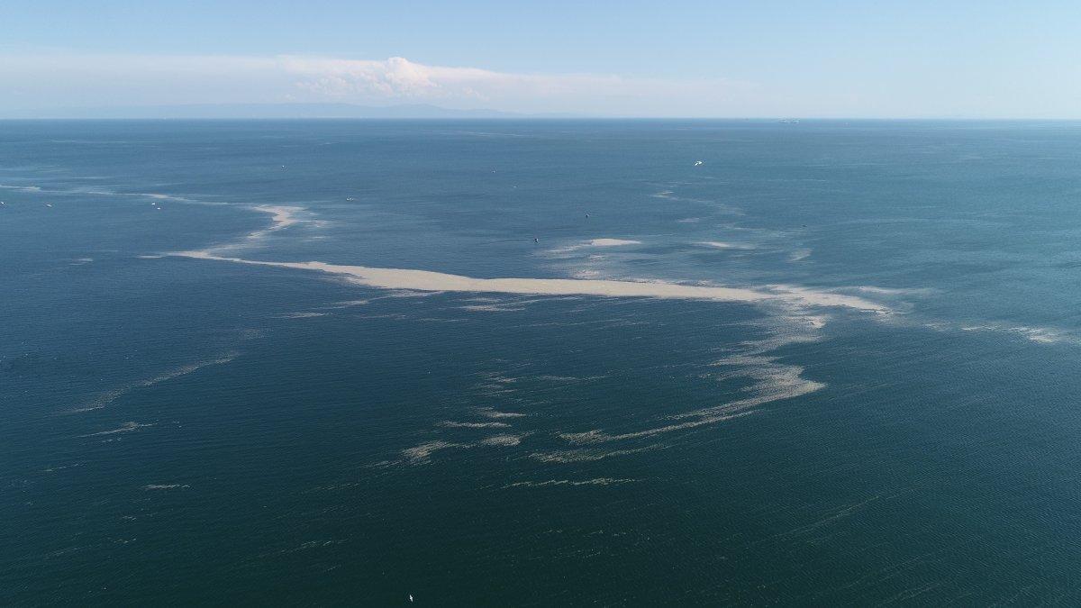 Küçükçekmece de müsilaj, ada görüntüsü oluşturdu  #3