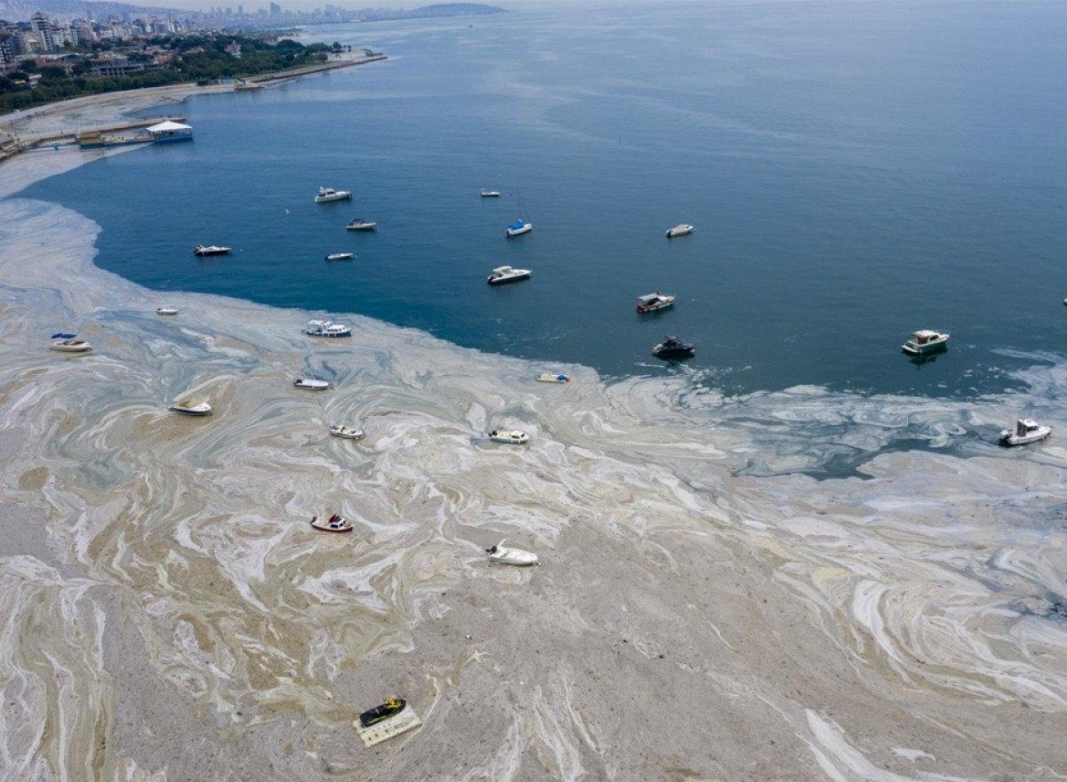 Marmara dan iki günde 392 metreküp müsilaj toplandı #12