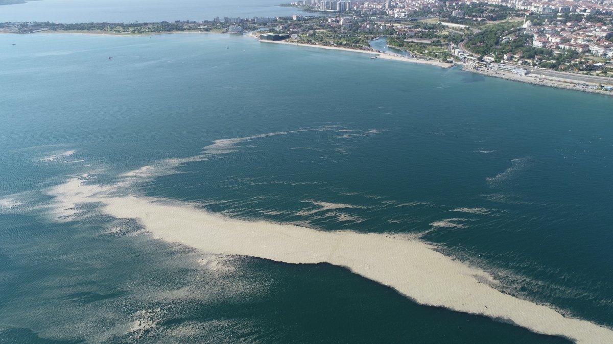 Küçükçekmece de müsilaj, ada görüntüsü oluşturdu  #7