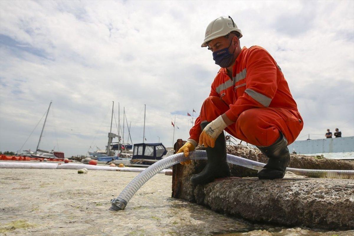 Marmara dan iki günde 392 metreküp müsilaj toplandı #9