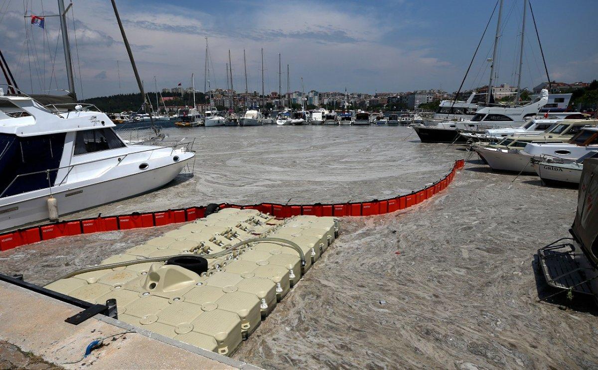 Marmara dan iki günde 392 metreküp müsilaj toplandı #17
