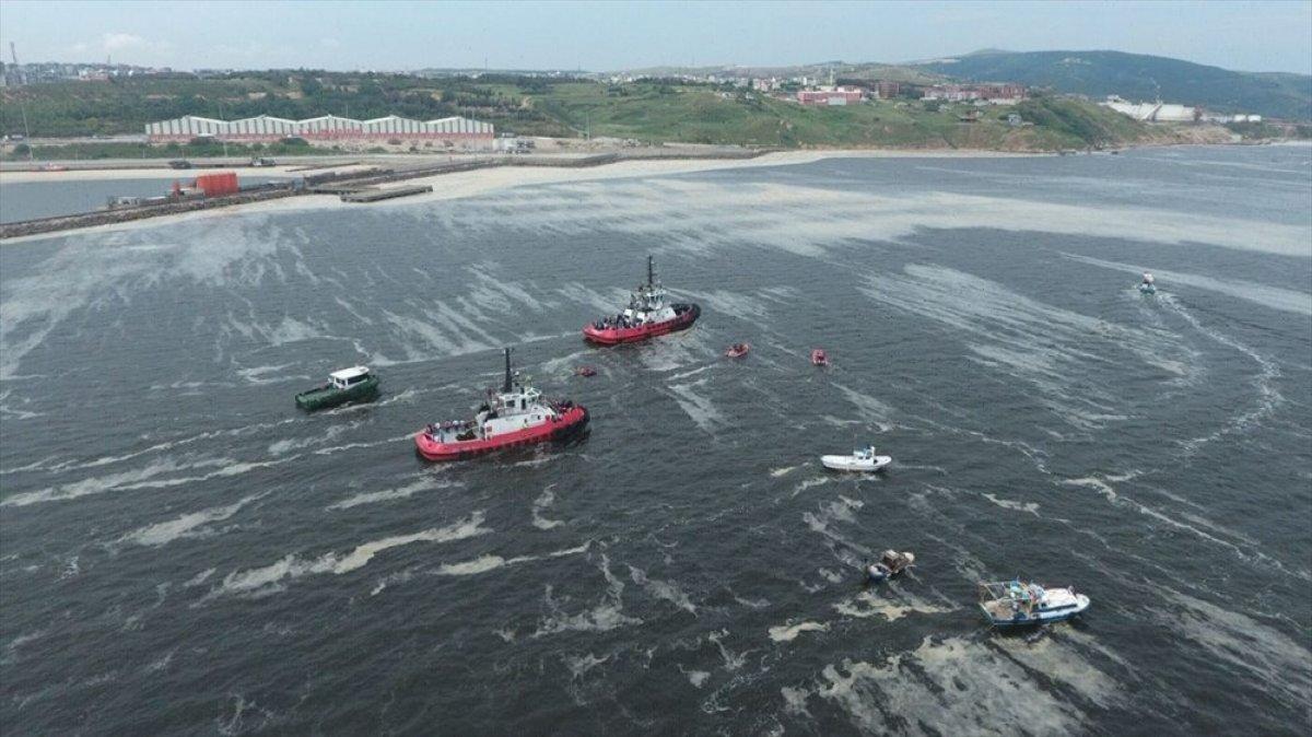 Marmara dan iki günde 392 metreküp müsilaj toplandı #8