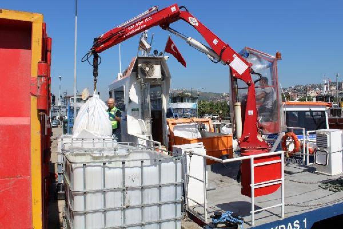 İzmit Körfezi nde müsilaj temizlendi, balıkçılar açıldı  #9