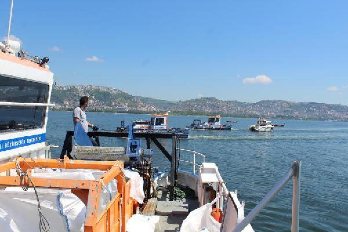 İzmit Körfezi nde müsilaj temizlendi, balıkçılar açıldı  #1
