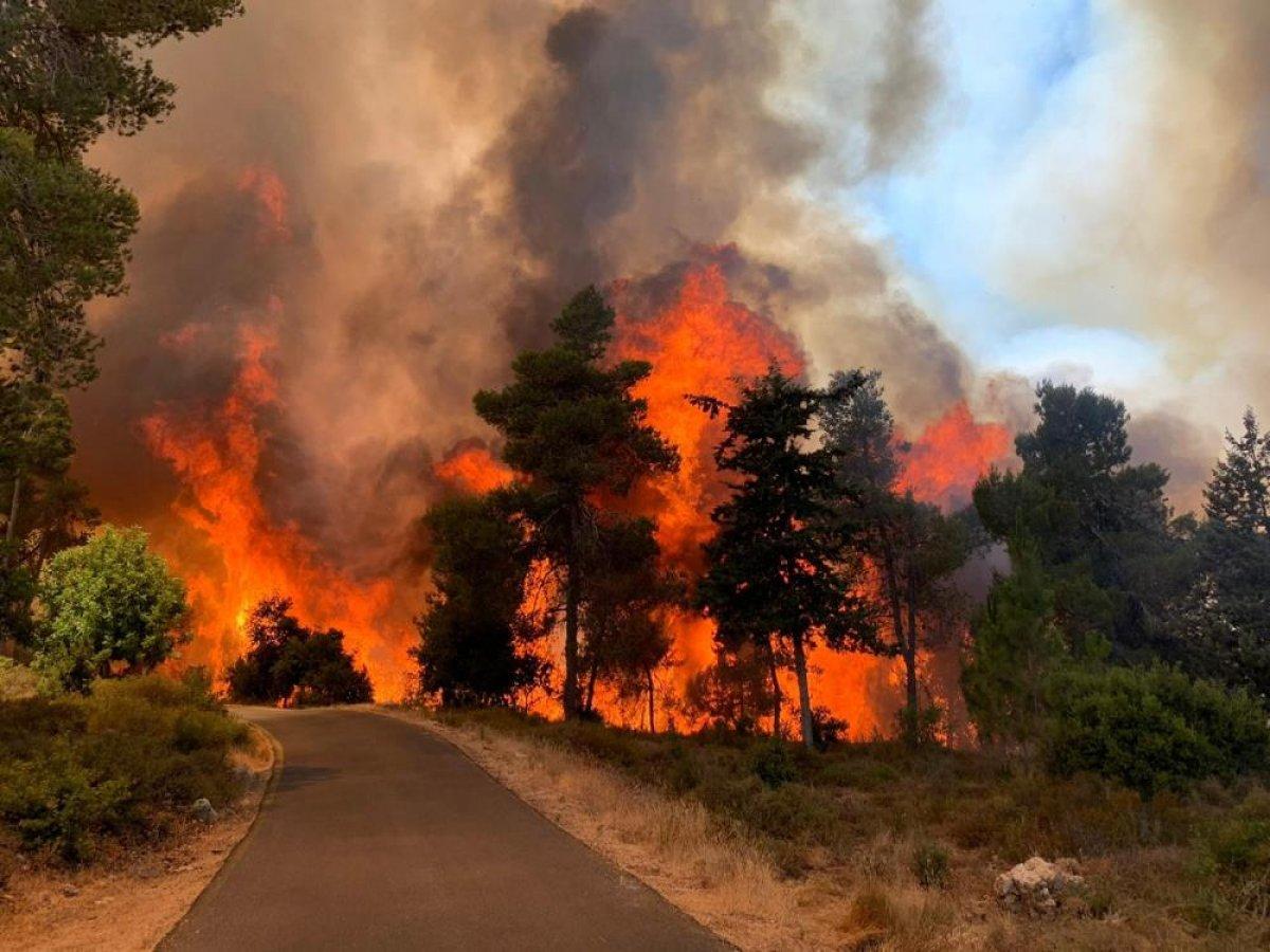 Kudüs'te yangın: 2 bin 650 dönüm arazi kül oldu #1