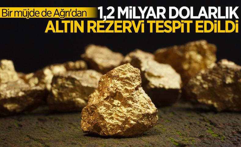 Ağrı'da altın ve gümüş rezervi tespit edildi