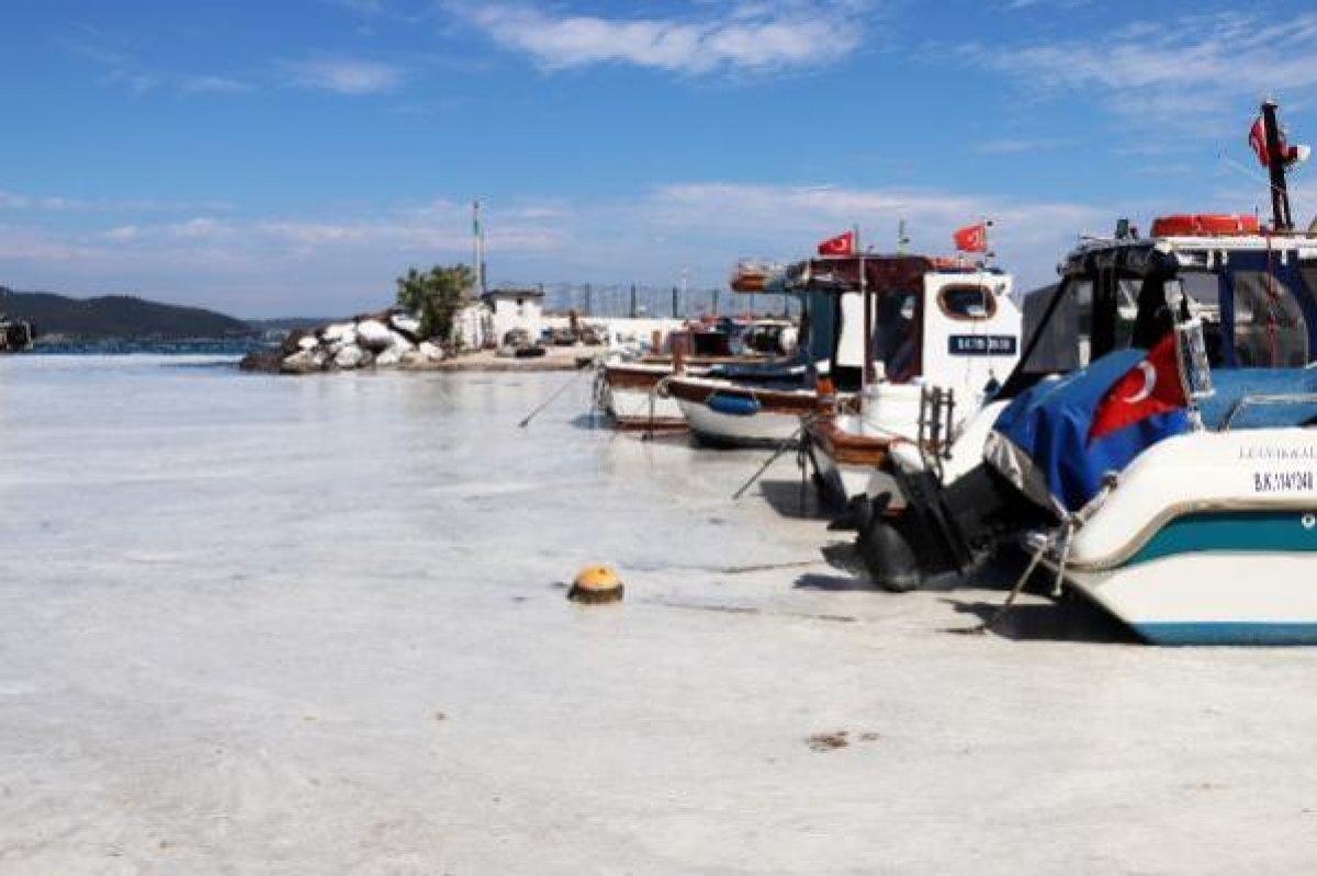 Çanakkale Boğazı temizleniyor: 3 günde 37 metreküp müsilaj toplandı #7