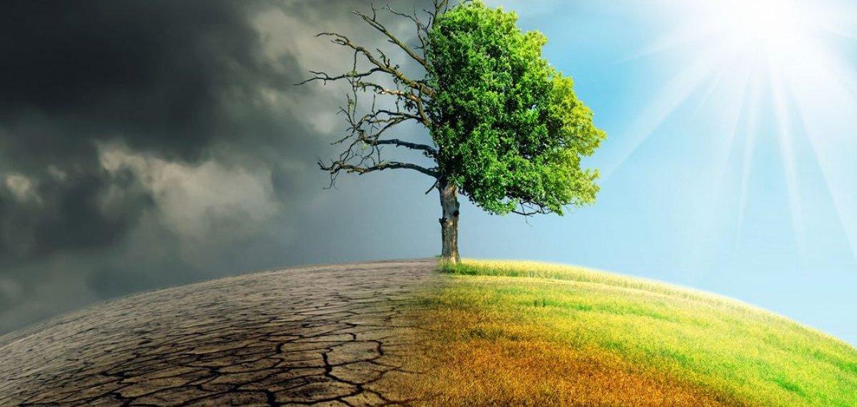 Uluslararası uzmanlardan iklim değişikliğine karşı ortak hareket çağrısı #2