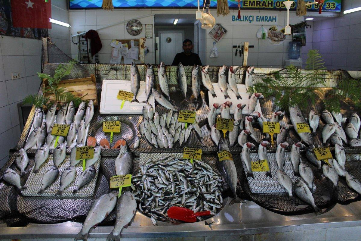 İzmit'te müsilaj, müşterinin ayağını balık pazarından kesti  #2