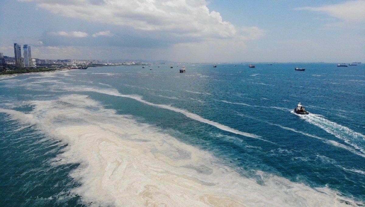 Kartal Sahili ndeki müsilaj havadan görüntülendi  #2