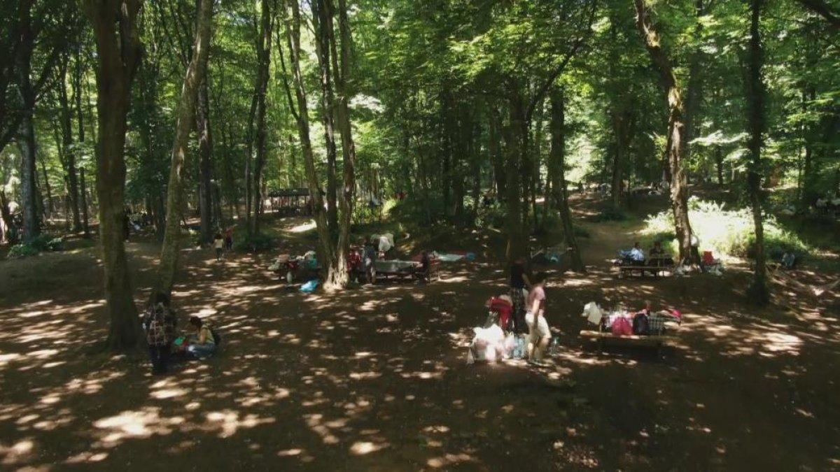 Belgrad Ormanı girişinde kilometrelerce araç kuyruğu #7