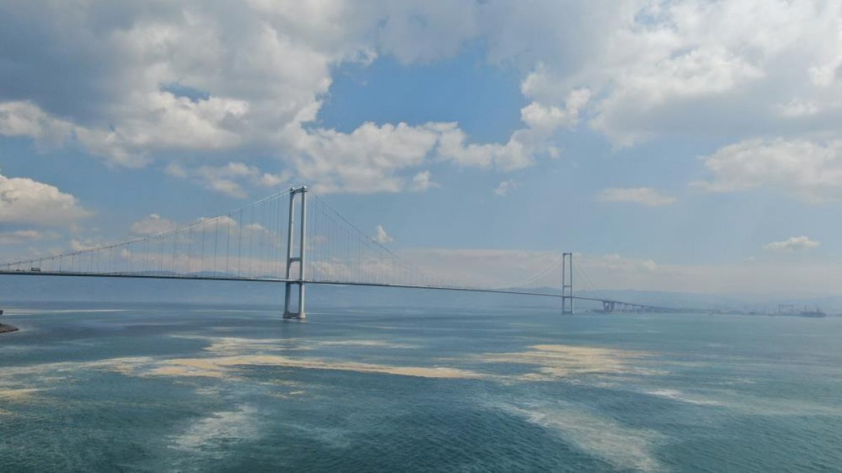 Osmangazi Köprüsü'nün etrafını deniz salyası sardı #8