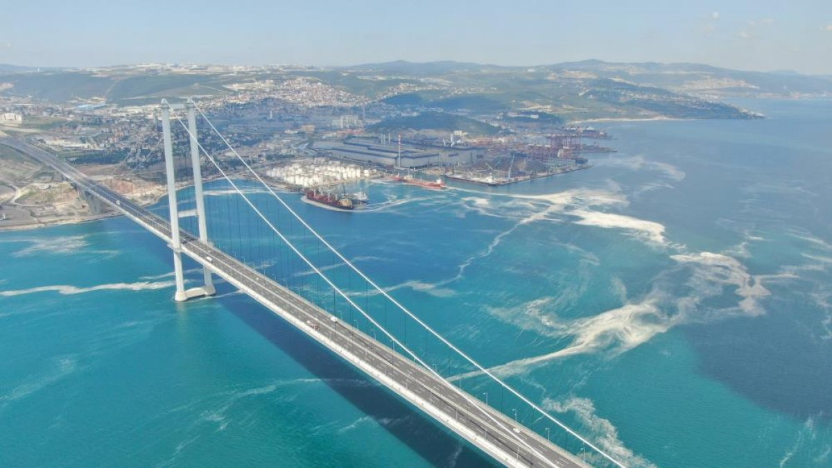 Osmangazi Köprüsü'nün etrafını deniz salyası sardı #3
