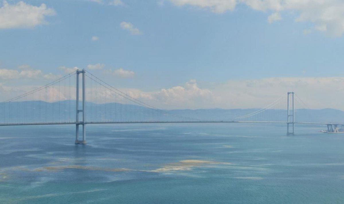 Osmangazi Köprüsü'nün etrafını deniz salyası sardı #5