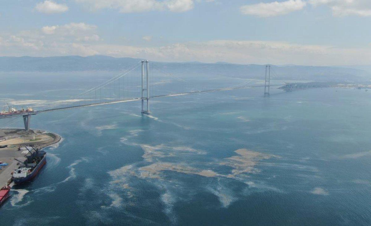 Osmangazi Köprüsü'nün etrafını deniz salyası sardı #7