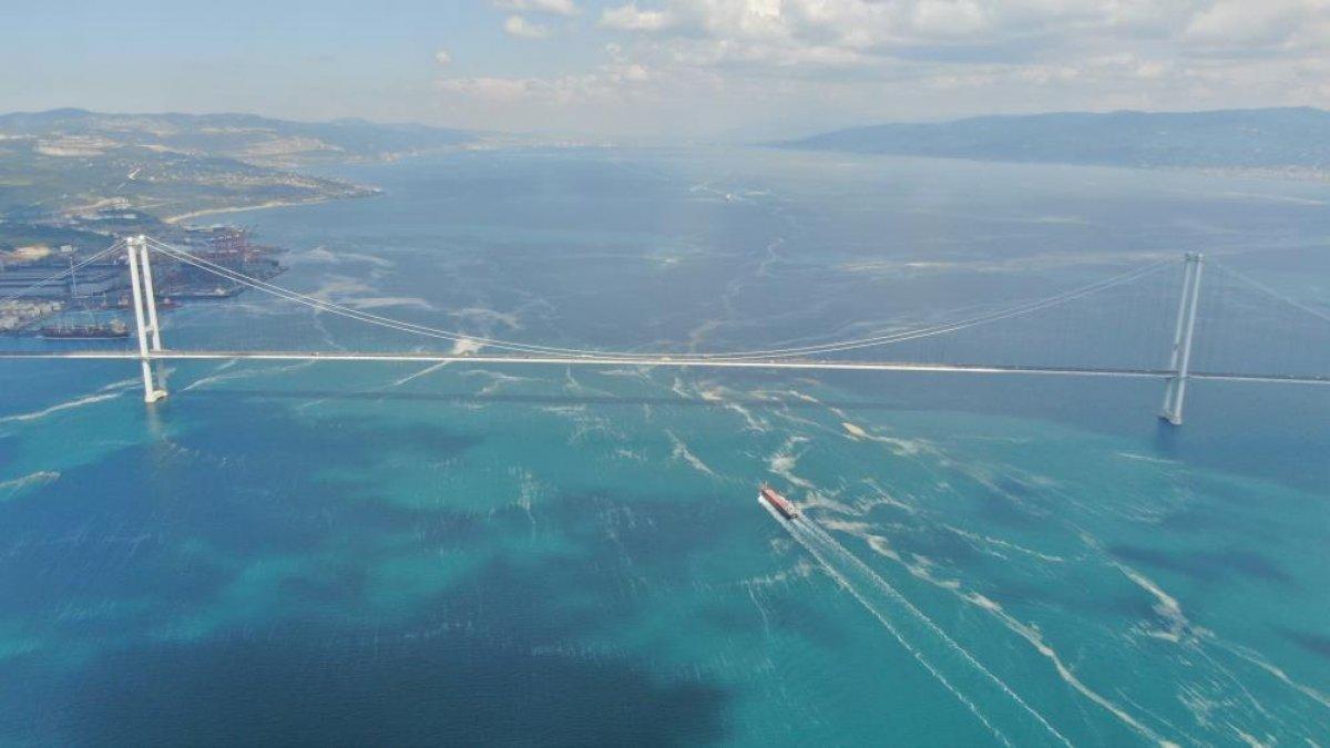 Osmangazi Köprüsü'nün etrafını deniz salyası sardı #4