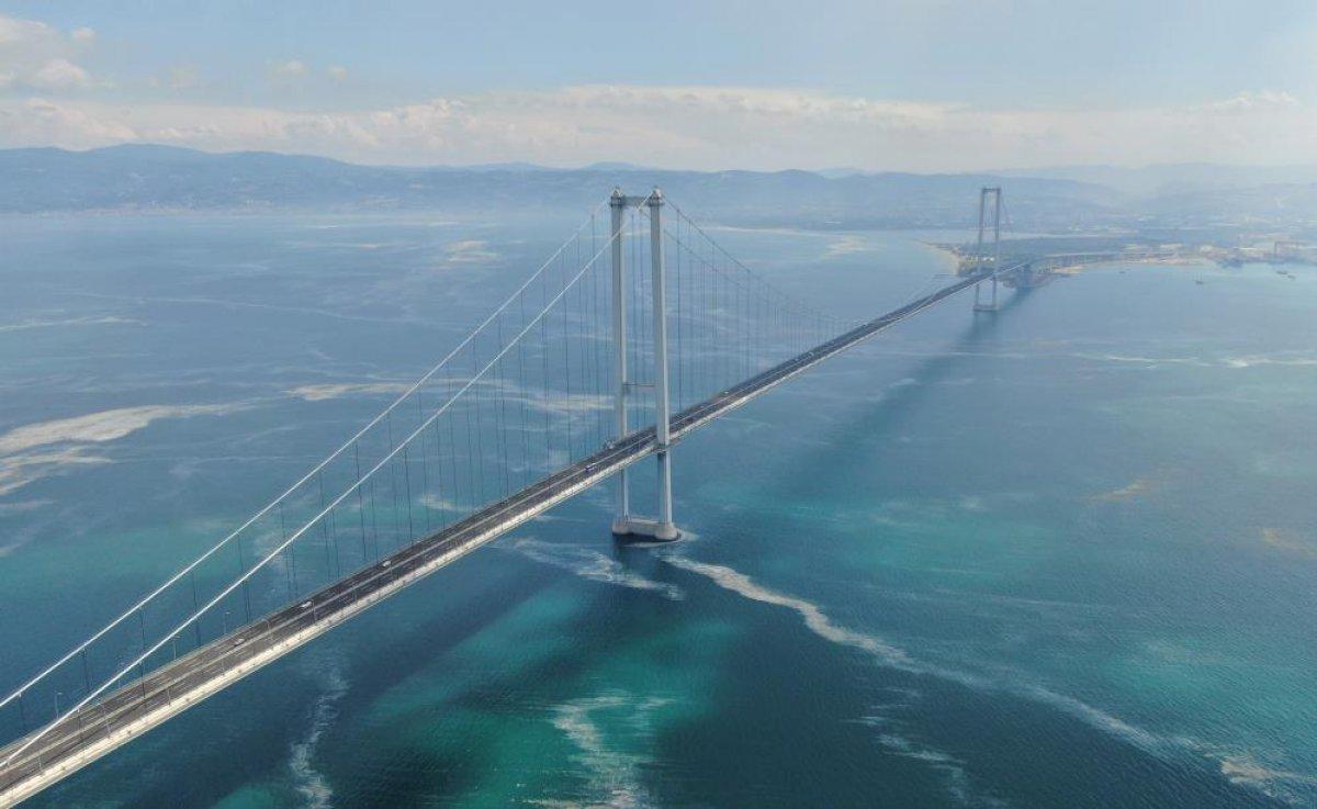 Osmangazi Köprüsü'nün etrafını deniz salyası sardı #1