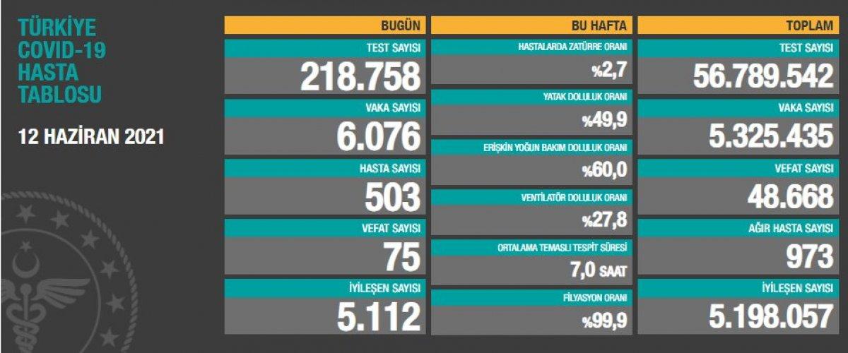 12 Haziran Türkiye de koronavirüs tablosu  #1