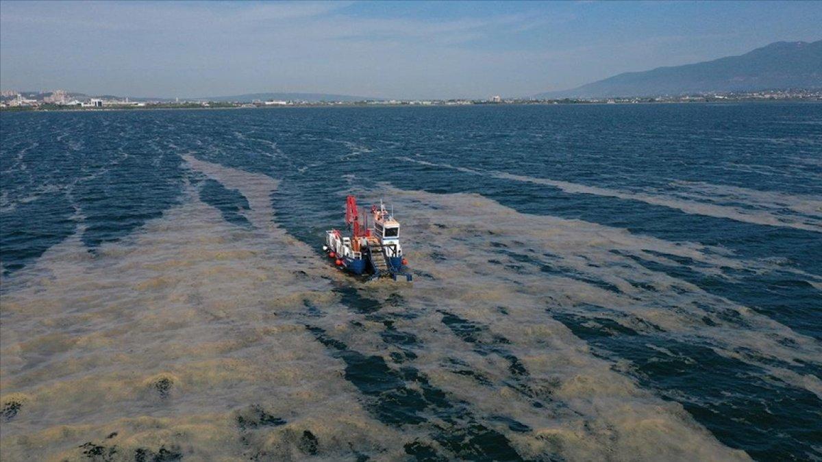 Marmara yı müsilajdan temizleme için Cumhurbaşkanlığı Genelgesi #1
