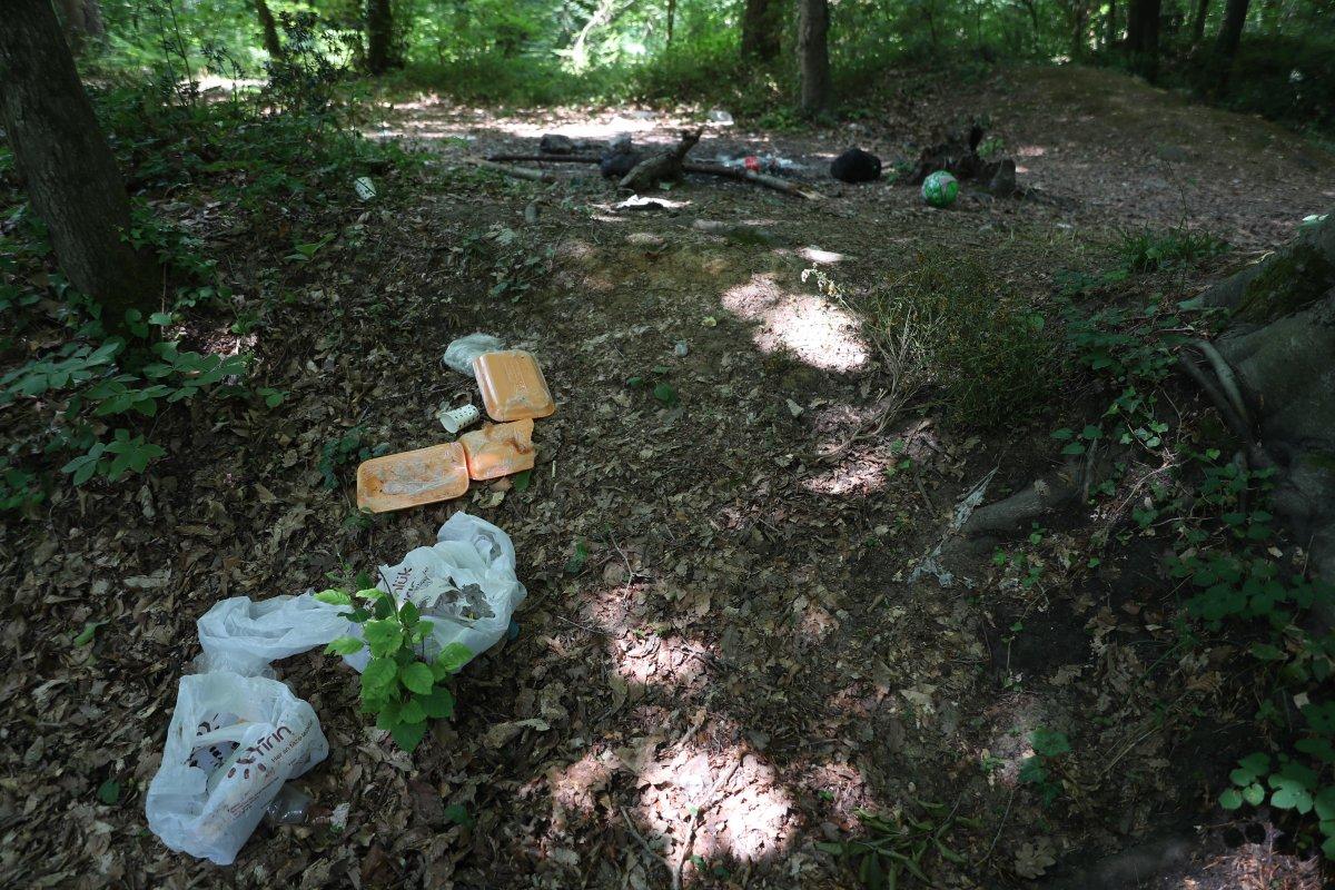 İstanbul da piknikçiler yine ormanı çöplüğü çevirdi #4