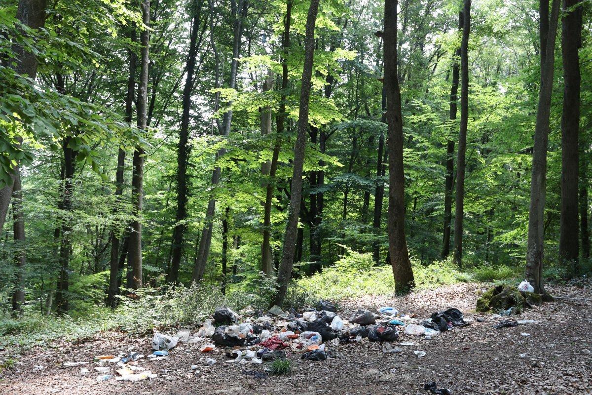 İstanbul da piknikçiler yine ormanı çöplüğü çevirdi #1