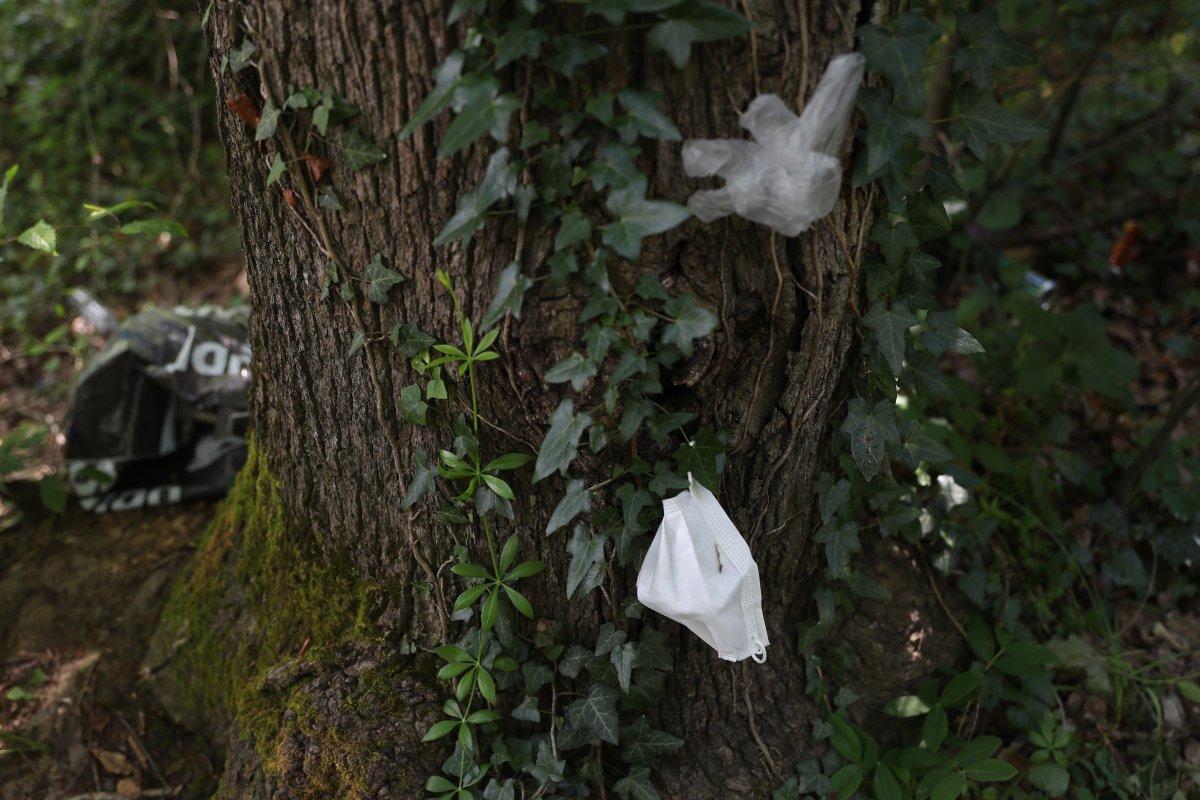 İstanbul da piknikçiler yine ormanı çöplüğü çevirdi #2