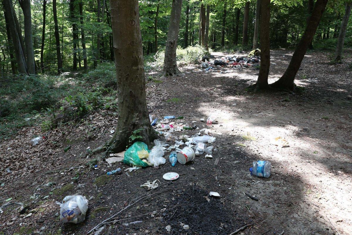 İstanbul da piknikçiler yine ormanı çöplüğü çevirdi #6