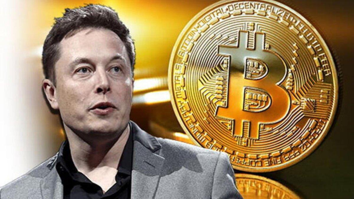 bitcoin elon
