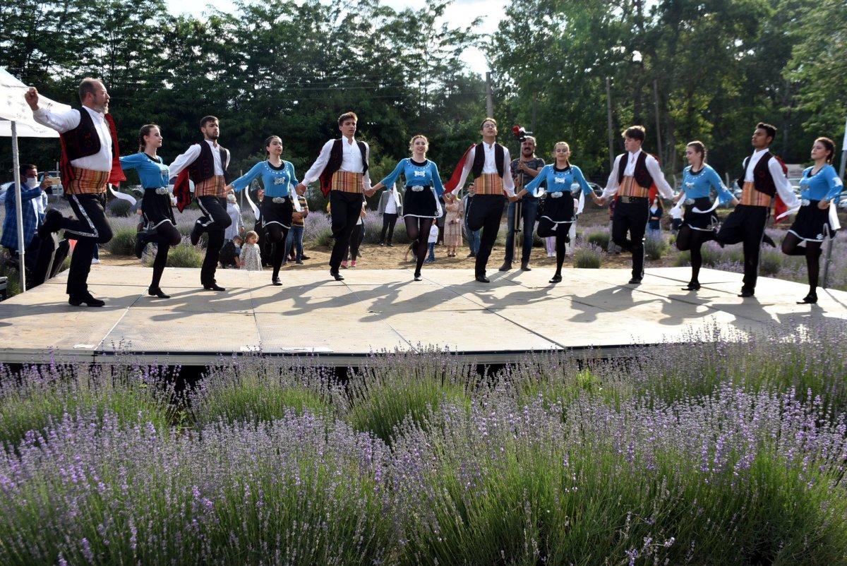 Edirne de mor tarlalar festival alanına döndü #9